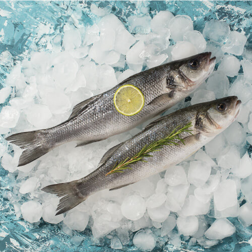 Branzino (Fresh Frozen)